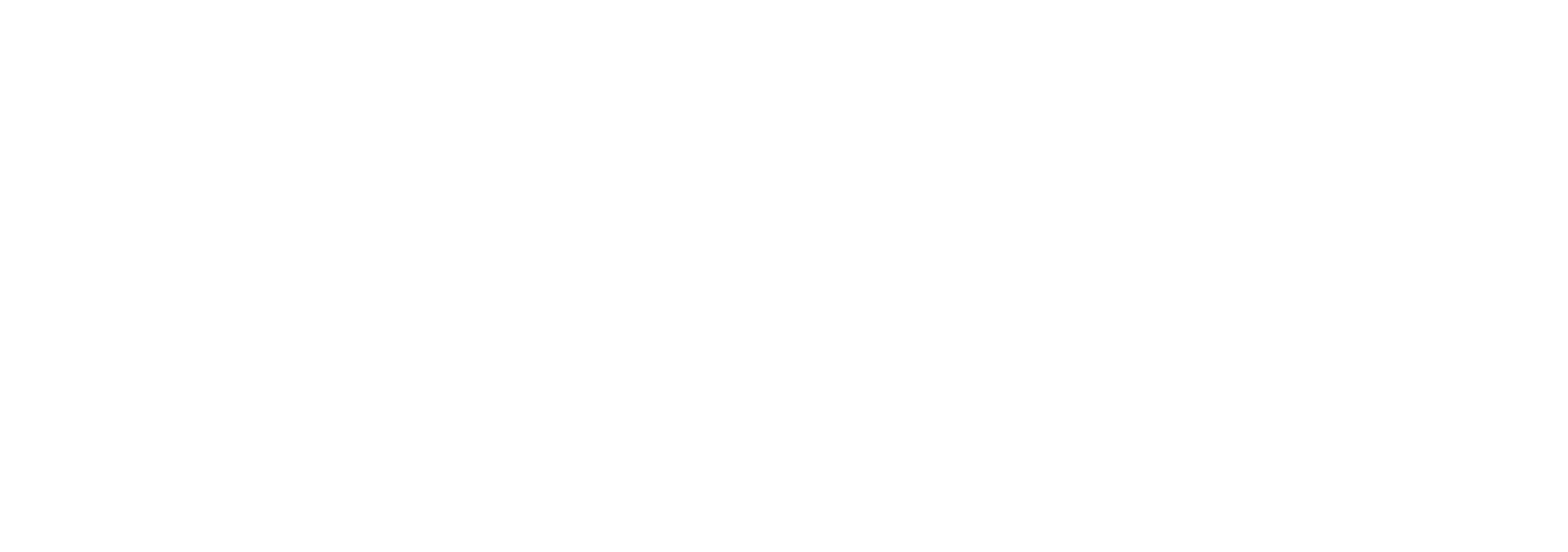 The Pisaneschi Group